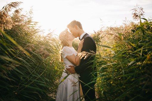 草むらでキスをするカップル